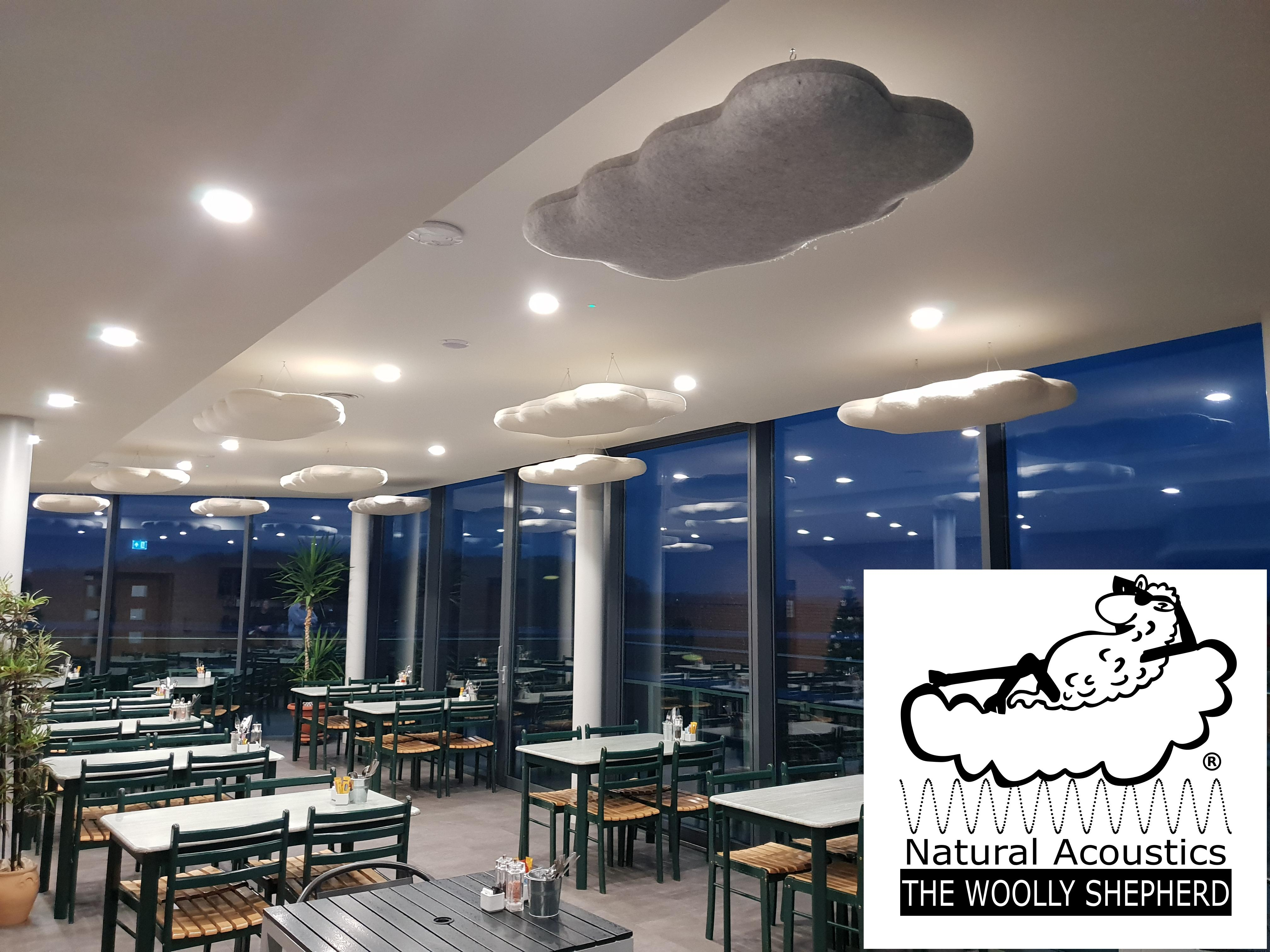 Natural Acoustics Ceiling Suspended Sound Cloud Baffles